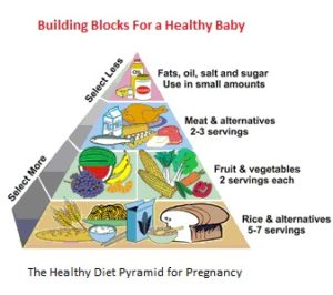 healthy eating guidelines for pregnancy